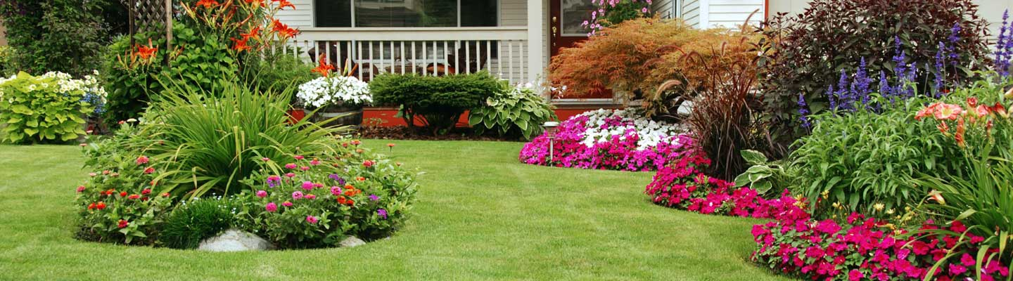 Best lawn care in lapeer lapeer lawn care for Best garden maintenance